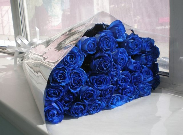 hoa-hong-xanh-6