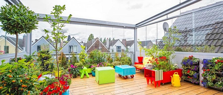 Thiết kế vườn trên sân thượng cho ngôi nhà phố thêm xinh