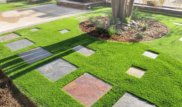 cỏ lá gừng tạo nên vẻ đẹp mắt cho công trình vườn nhà