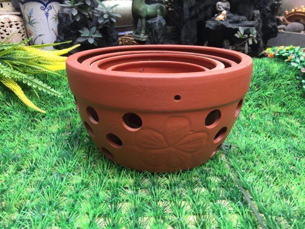 Vật liệu trồng lan kiếm